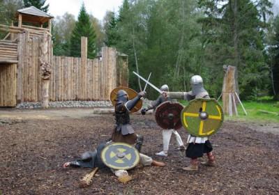 Viking battle