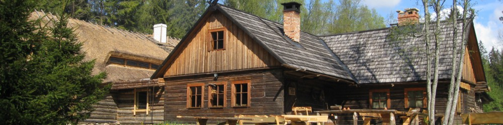 Tallinn Tours - Viking Village Visit
